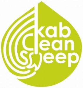 keep austin beautiful clean sweep